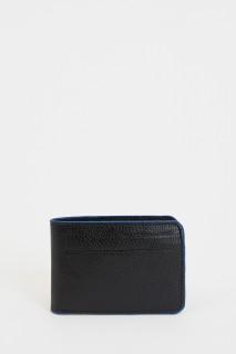 card-wallet-8682446898179-2305999.jpeg