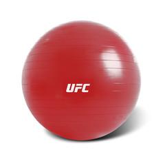 Fitball - 65cm -4711667691598