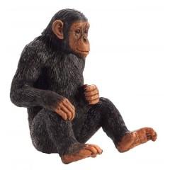Mojo Chimpanzee