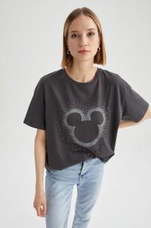 woman-anthra-short-sleeve-t-shirt-s-2459211.jpeg