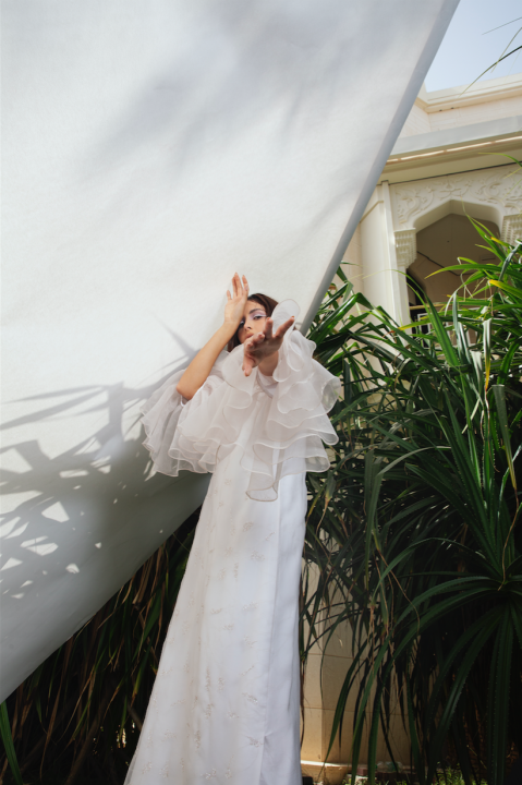 hand-embroidered-soft-organza-white-2121175.png
