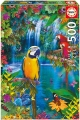 500 Bird Tropical Land