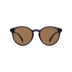 Dion Villard ladies sunglasses, Brown color, acetate material, Round shape DVSGL1912BR