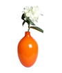 Orange Decorative Accessories - ACS011FEB20